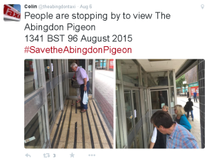 Locals help save pigeon from Co-op store