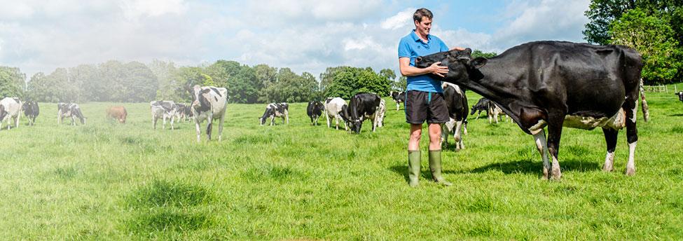 Meet the Diary Farmer Colin Mair