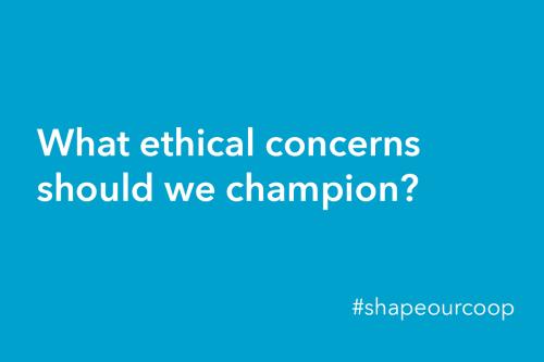 Group - shapeourcoop- ethics