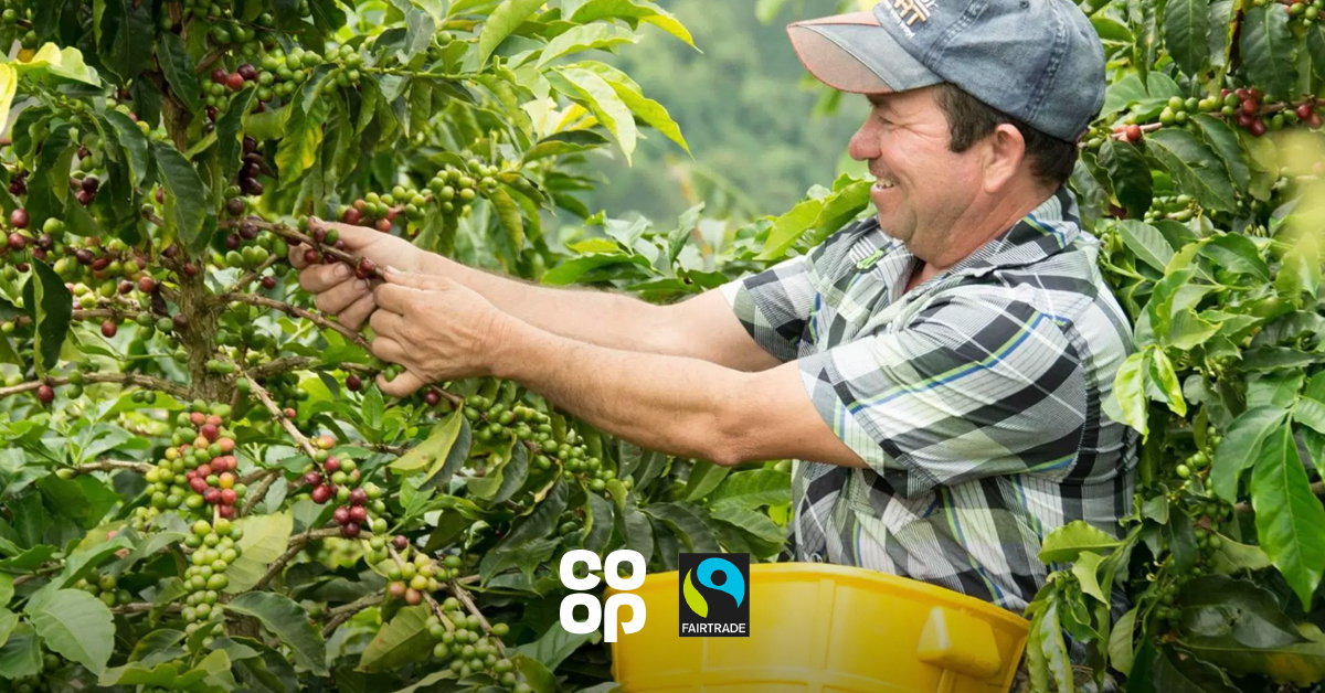 Fairtrade won't work if we continue to confuse customers